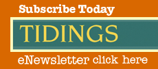 WSCA's Tidings Newsletter
